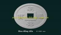 Hoa Đồng Tiền