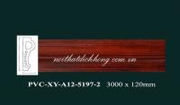 PVCXY-A12-5197-2
