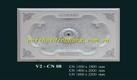 V2 -CN 08