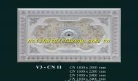 V3 - CN 11