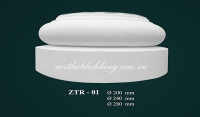 ZTR - 01