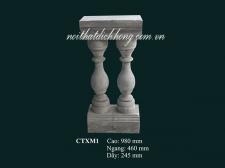 CTXM1