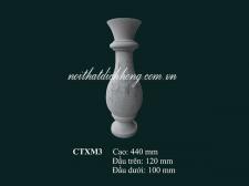 CTXM3