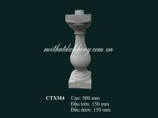 CTXM4