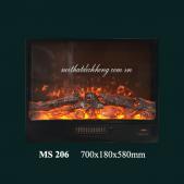 MS 206