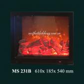 MS 231B
