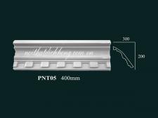 PNT05
