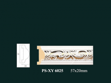 PSXY6025