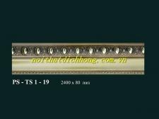 PS - TS1 - 19