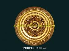 PUDP-01