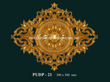 PUDP - 23