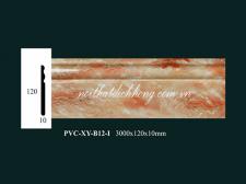 PVC-XY-B12-I