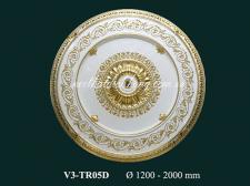 V3 TR05D