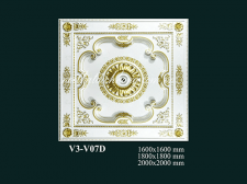 V3-V07D