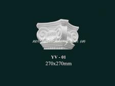 YV - 01