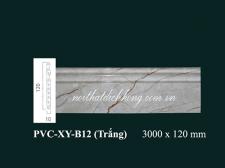 pvc-xy-B12 trang